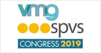 VMG logo