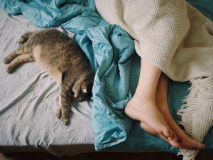 The Link Between Diet and Sleep